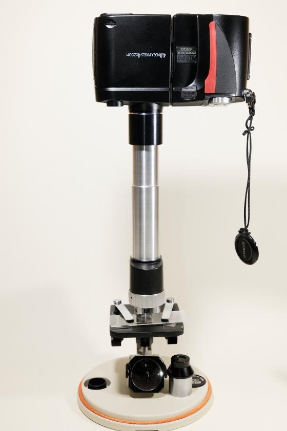 Nikon Coolpix 4500 an MeOpta- Schülermikroskop
