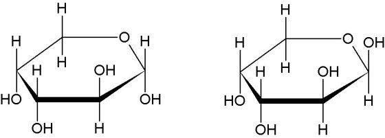Alpha-D-Arabinopyranose Beta-D-Arabinopyranose
