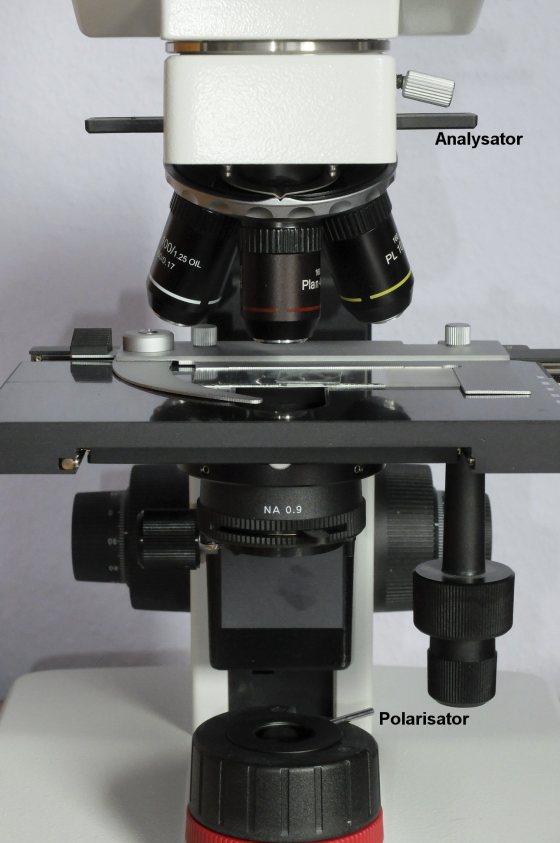 Polarisationsmikroskop