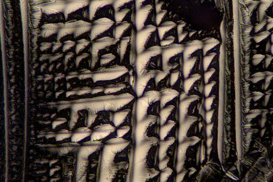 L-Weinsäure fotografiert im polarisierten Licht ohne L/Plättchen.
