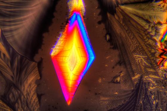 Asparaginsäure fotografiert im polarisierten Licht. Vergrößerung 100x.