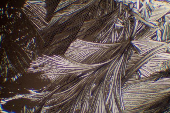 Äpfelsäure kristallisiert aus Isopropanol ohne Tesafilm unter dem Objektträger